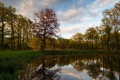 Картинка пейзаж, парк, Castle Pond at De Slangenburg