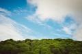 Картинка небо, облака, деревья