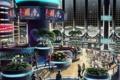 Картинка космос, город, будущее, люди, луна, растения, кафе