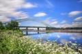 Картинка England, река, Англия, Runcorn, Ранкорн, мост, цветы
