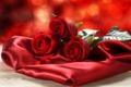 Картинка цветы, розы, шелк, красные, ткань, сатин