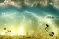 Картинка небо, вода, облака, рыбы, водоросли, пузыри, коллаж