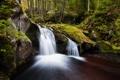 Картинка лес, природа, река, поток, водопадик