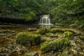 Картинка лес, деревья, камни, скалы, водопад, поток