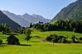 Картинка поле, лес, трава, деревья, горы, дома, Швейцария