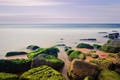 Картинка песок, море, пляж, небо, водоросли, камни, берег