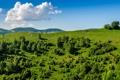 Картинка небо, трава, облака, деревья, горы, холм, зеленая