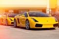 Картинка желтый, Lamborghini, Gallardo, суперкары