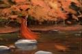 Картинка камни, осень, рога, озеро, ветер, воин, шлем