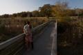 Картинка девушка, мост, пара, парень