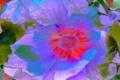 Картинка цветок, линии, крвски, природа, лепестки, рендеринг