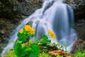 Картинка река, поток, водопад, ручей, горы, цветы