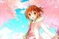 Картинка небо, девушка, облака, деревья, аниме, лепестки, сакура