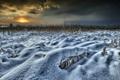 Картинка поле, снег, закат
