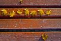 Картинка осень, листья, макро, настроение, настроения, фотографии, осенние обои