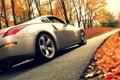 Картинка дорога, осень, листва, nissan, 350z