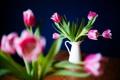 Картинка цветы, лепестки, тюльпаны, розовые