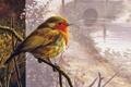 Картинка пейзаж, мост, птица, текстура