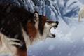 Картинка зима, животные, взгляд, снег, волк, арт, белый медведь