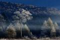 Картинка осень, небо, деревья, туман, холмы