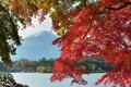 Картинка осень, небо, листья, деревья, озеро, дом, Япония