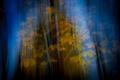 Картинка осень, листья, природа