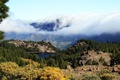 Картинка лес, облака, горы, природа, озеро