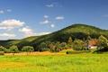 Картинка поле, лето, деревня, Summer Time