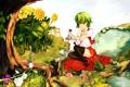 Картинка трава, вода, девушка, подсолнухи, цветы, корни, дерево