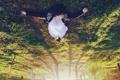 Картинка лес, трава, свет, деревья, девушки, настроение, отдых