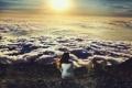 Картинка небо, девушка, солнце, облака, одиночество, высота