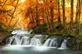 Картинка пейзаж, река, поток, лес, осень, деревья, водопад