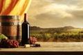 Картинка вино, красное, бутылка, виноград, виноградник, занавеска, штопор