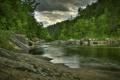 Картинка лес, камни, река, природа