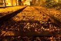 Картинка железная дорога, город, осень, ночь