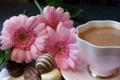 Картинка цветы, чай, молоко, конфеты
