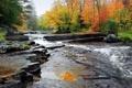 Картинка осень, лес, деревья, ручей, камни, течение, США
