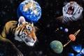Картинка космос, планета, арт, Земля, тигры, William Schimmel