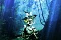 Картинка лес, девушка, свет, деревья, природа, грибы, шляпа