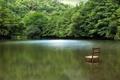 Картинка природа, стул, озеро