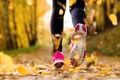 Картинка winter, sports shoes, sportswear, running