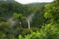 Картинка зелень, листья, заросли, водопад, склон, кусты, в китае