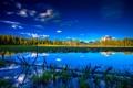 Картинка лес, небо, озеро, дерево