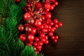 Картинка ягоды, растение, елка, ель, ветка, красные, остролист