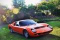 Картинка деревья, красный, Lamborghini, сад, суперкар, кусты, передок
