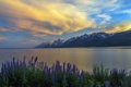 Картинка Grand Teton, Jackson Lake, Sunset