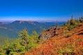 Картинка осень, лес, небо, трава, деревья, горы, склон