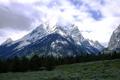 Картинка лес, облака, снег, горы, поляна