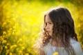 Картинка лето, цветы, природа, ребенок, девочка