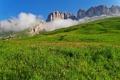 Картинка Альпы, луг, Италия, разнотравье, горный хребет, Доломиты